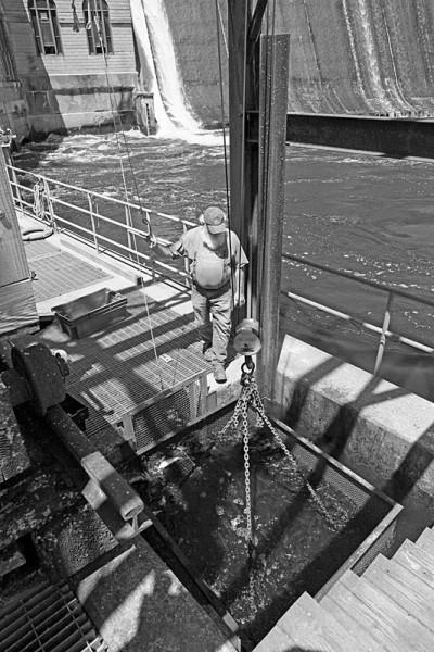 Harvesting River Herring at Dam