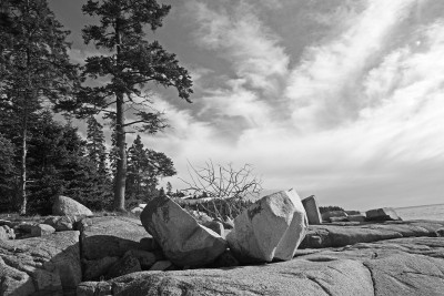 Acadia National Park No.1