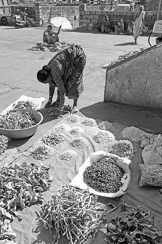 Dried Seafood Products