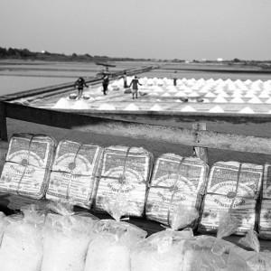 Salt Harvest in Thailand