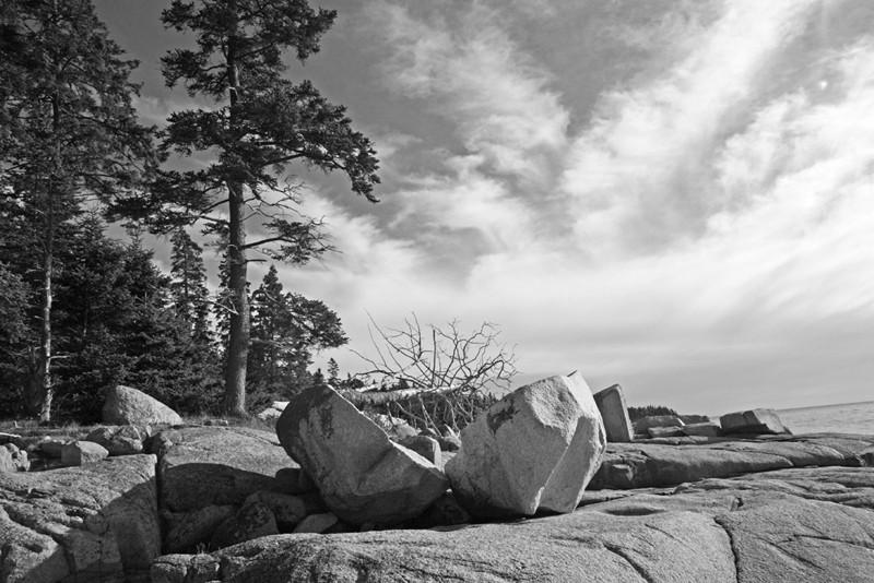 Acadia National Park No.1
